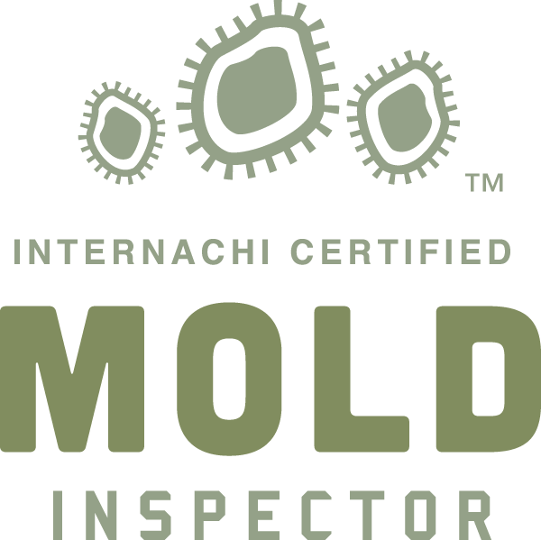 Mold Inspection Dandridge