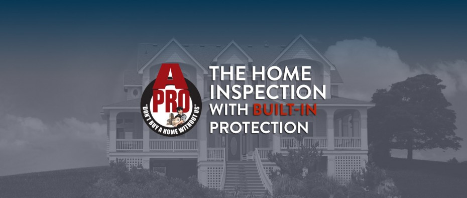 Dandridge winter home inspection