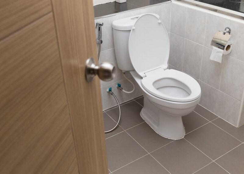 Toilet Inspection Morristown